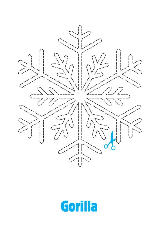 070127_sneeuwvlok